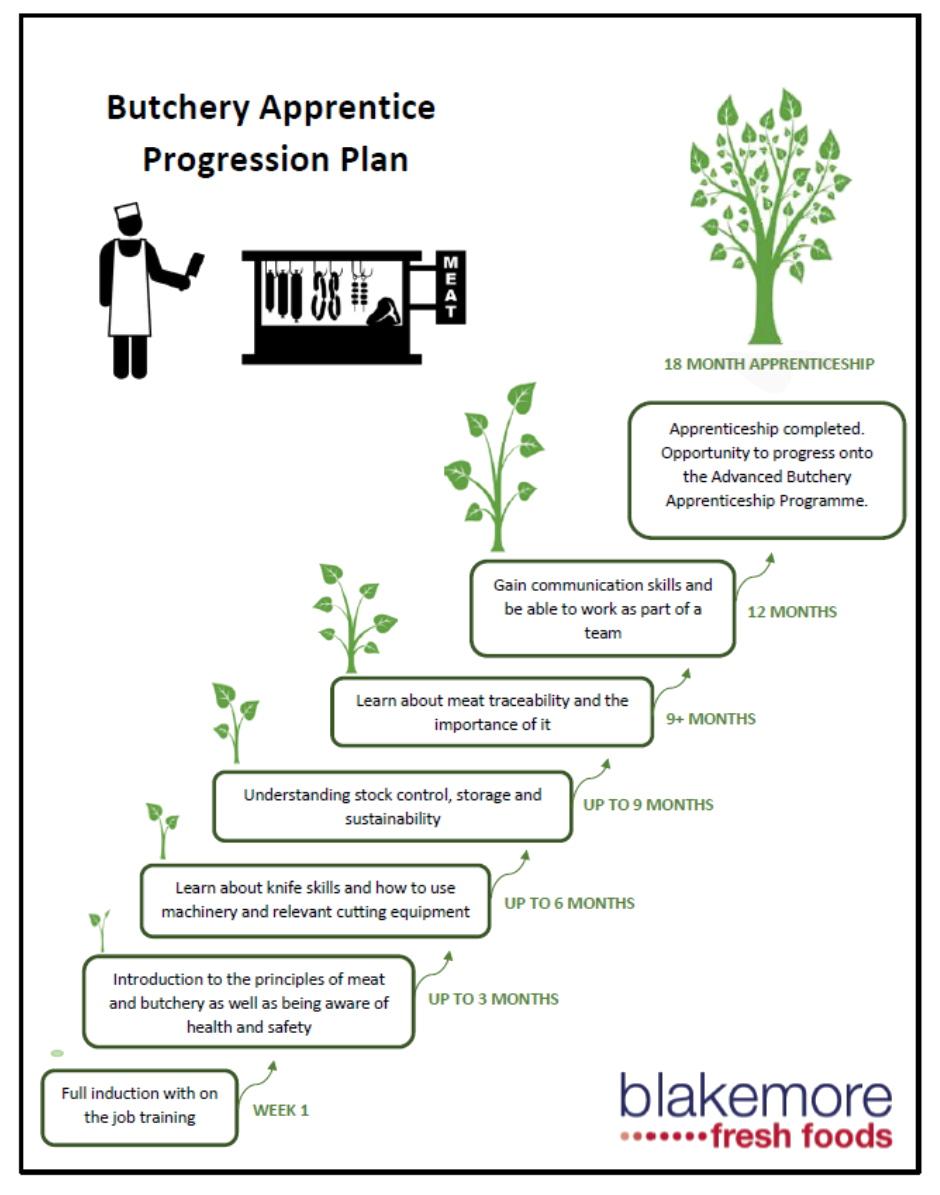 Butchery apprentice progression plan