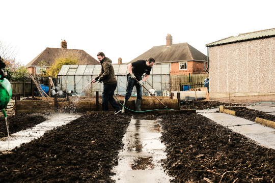 Old_Hall_Allotments_6.jpg